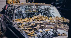 Автомобиль осенью. Фото Artur D. / Unsplash